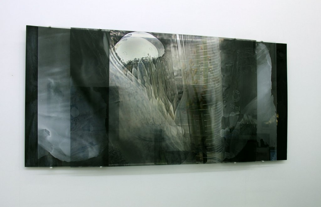 Janet Laurence <em>Forensic Sublime series (carbon vein)</em> 2010 Duraclear, acrylic, Dibond mirror, wood, brackets 100 x 258 cm