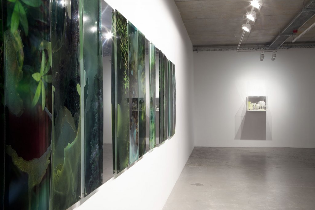 Janet Laurence <em>Fabled</em>, 2012 Installation view<em> </em>