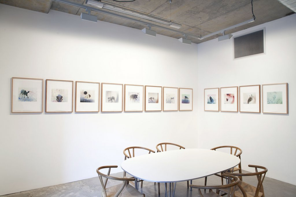 Janet Laurence <em>Fabled</em>, 2012 installation view