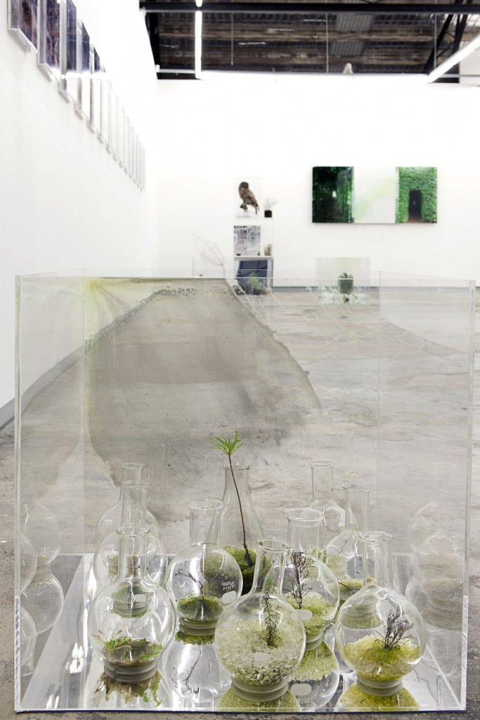 <div>Janet Laurence</div>